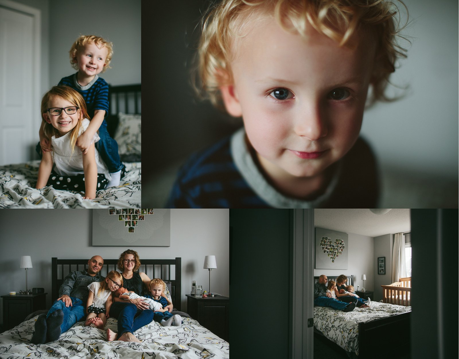 kelly macdonald calgary newborn photographer